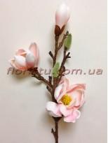 Магнолия древовидная латексная премиум класса Нежно-розовая 60 см