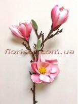 Магнолия древовидная латексная премиум класса Розовая 60 см