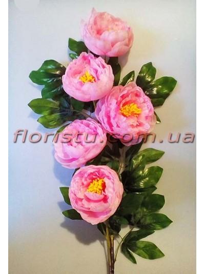 Пион высокий премиум класса Розовый 1,20 м 5 гол. 13 см