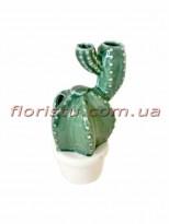 Керамический кактус в кашпо 13 см