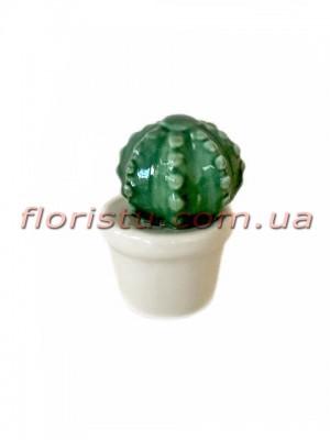 Керамический кактус в кашпо 7 см