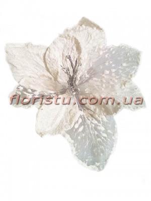 Пуансеттия заснеженная премиум Белая 25 см