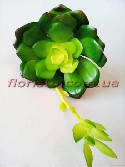 Суккулент искусственный со стрелой №3 зеленый 20 см