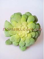 Искусственный суккулент Эониум плоский бархатистый зеленый 12 см