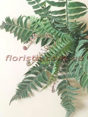 Куст папоротника нефролепсиса премиум класса Дымчато-зеленый 21 ветка 45 см
