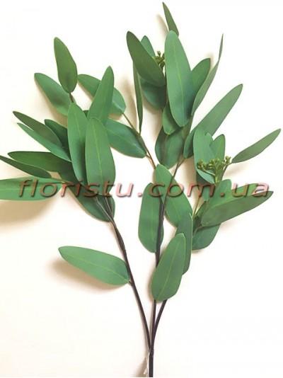 Эвкалипт глобулюс латексный Зеленый 83 см
