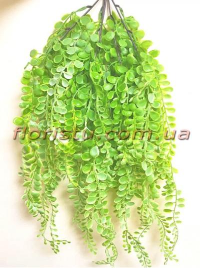 Пеллея ампельная пластик Светло-зеленая 67 см