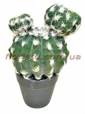 Кактус исскусственный в вазоне 24 см