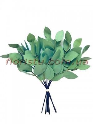 Эвкалипт популюс латексный Зеленый 35 см 8 веток