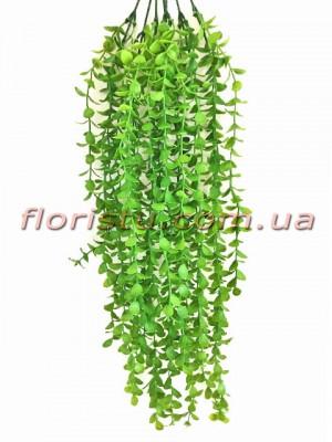 Самшит ампельный пластик Зеленый 65 см