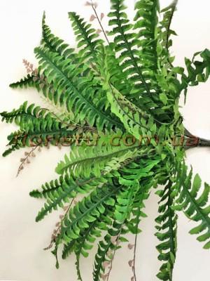 Куст папоротника нефролепсиса крупный Зеленый 65 см