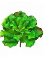 Искусственный суккулент эониум волнистый Зеленый 22 см