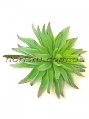 Суккулент искусственный Эхеверия нежно-зеленая 15 см