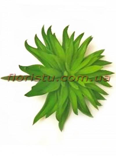 Суккулент искусственный Эхеверия зеленая 15 см