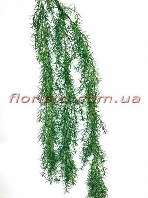 Лиана ампельная Аспарагус зеленая 90 см