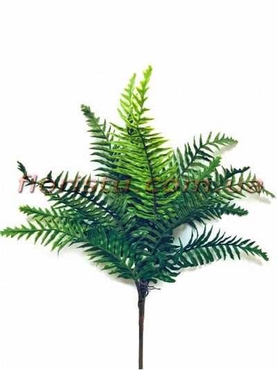 Папоротник премиум класса куст 43 см 15 листьев