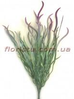Трава осока волнистая зеленая с напылением Бордо 25 см