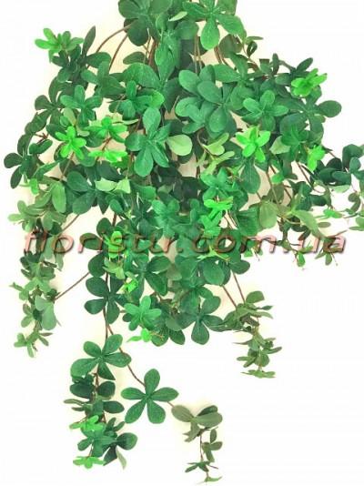 Лиана Шеффлера зеленая ампельная премиум 90 см