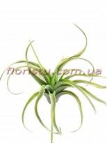 Тилландсия искусственная Дымчато-зеленая 20*30 см
