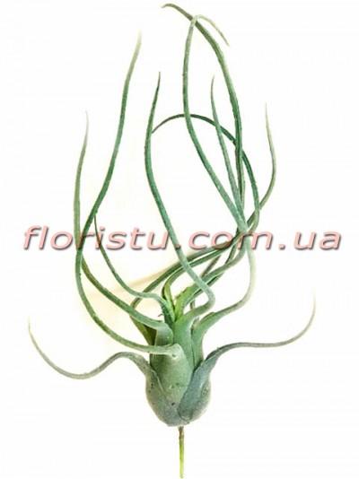 Тилландсия Медуза искусственная Дымчато-зеленая 35 см