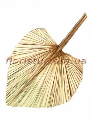 Лист пальмы сухостой Золото 35*45 см