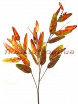 Эвкалипт глобулюс латексный Оранжевый осенний 81 см