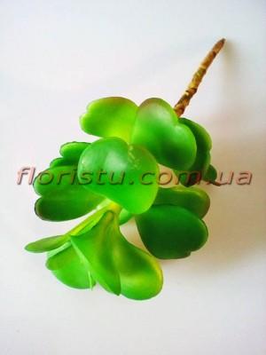 Крассула искусственная зеленая 25 см