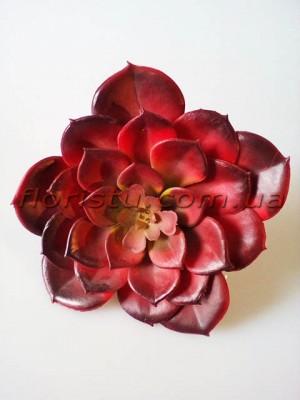 Эхеверия Каменная роза искусственная бордо 13 см