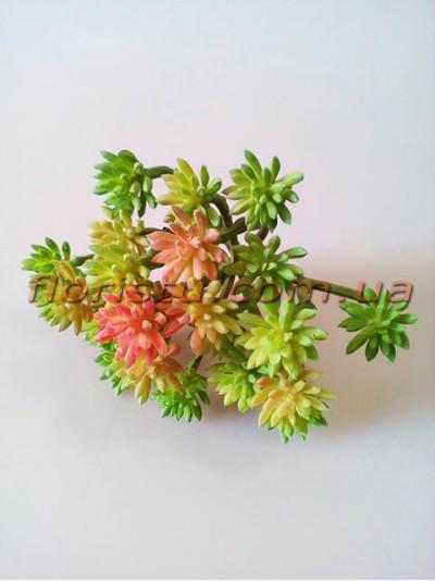 Крассула искусственнаяя розово-зеленая 11 см