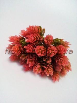 Шишки хмеля розово-зеленые пучек 6 шт. 30 шишек