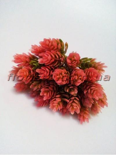 Шишки хмеля розово-зеленые пучок 6 шт. 30 шишек