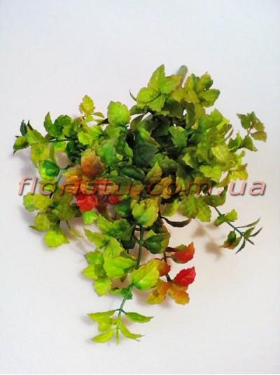 Куст зелени Премиум Люкс зеленой с бордо 30 см
