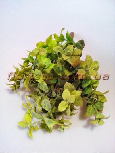 Куст зелени Премиум Люкс дымчато-зеленой с розовинкой 30 см
