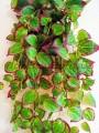 Лиана ампельная искусственная Премиум Люкс №5 Зеленая с бордо 85 см